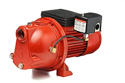 Red Lion Cast Iron 3/4-HP 13-GPM Shallow Well Jet Pump