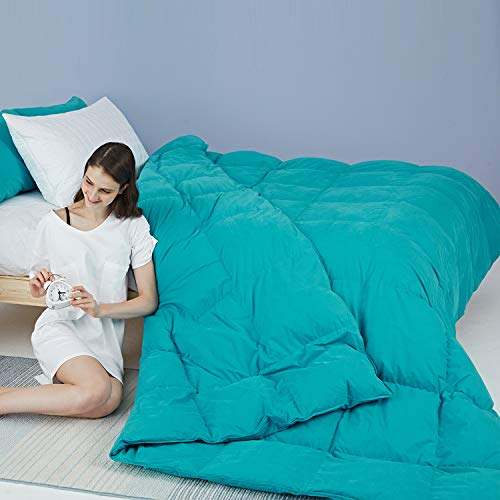 Globon Fusion White Goose Down Comforter Twin 40oz, 600 Fill Power, 100% Cotton Shell with Brushed Finish, Hypoallergenic, with Corner Tabs, All Season,Turquoise Blue