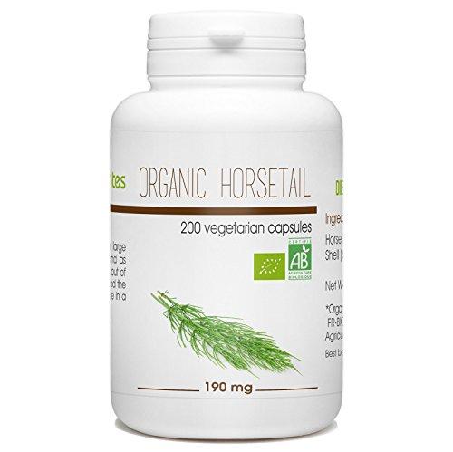 Organic Horsetail – 190 mg – 200 Vegetable Capsules