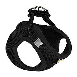 Dog Halter Harnesses