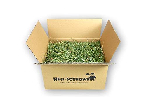 Kräuterheu Heu-Scheune® (Petersilienstiele, Himbeerblätter, Brennnesseln, Spitzwegerich, Löwenzahn.) (5kg)