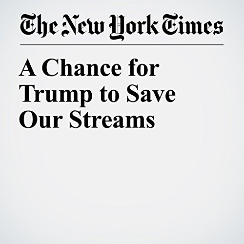 A Chance for Trump to Save Our Streams copertina
