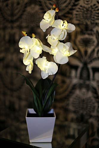 Kunstpflanze Orchidee, beleuchtet, mit Timer, batteriebetrieben mit 9 Lichtern