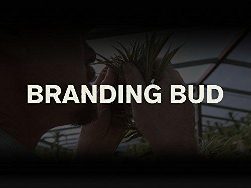 Branding Bud - Episode 1