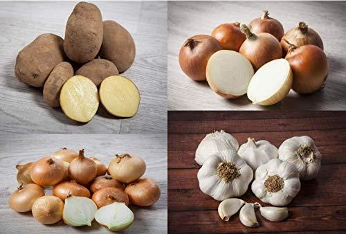 COMBO ECONÓMICO: 3 kg PATATA AGRIA + 1 kg CEBOLLA GRANO + 500 gr AJO BLANCO + 500 gr CEBOLLITA CHATA
