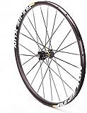 TYXTYX Rueda Delantera de Bicicleta de Carretera 700c Llantas de Doble Pared para Bicicleta Buje de aleación Freno de Disco de Eje pasante 24H 745g para neumático 23-38c