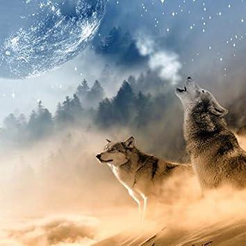 Lobos do Mundo ao sul