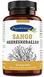 Sango Meereskorallen Kapseln (60 Stück) | Ideales 2:1 Verhältnis aus Calcium und Magnesium | Frei...