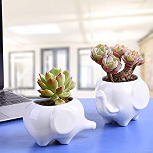 Gift Pro Elephant Plant Window Boxes With Tray Set of 2 Cute Elephant Flower Pot,Modern White Ceramic Succulent Planter Pots / Tiny Flower Plant Containers (Style 2)