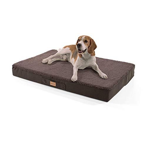 brunolie Balu großes Hundebett in Dunkelbraun, waschbar, orthopädisch und rutschfest, kuscheliges Hundekissen mit atmungsaktivem Memory-Schaum, Größe L (100 x 65 x 10 cm)