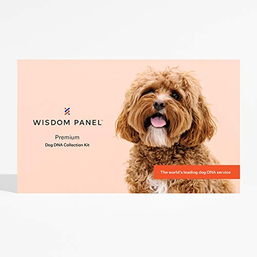 Wisdom Panel Premium - Dog DNA Test for Comprehensive Health, Traits, and Ancestry, 75 g
