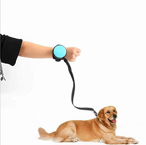 Automatische Hundeleine, Haustier Hund Katze einziehbare Leine Traktionsseil Teleskop Traktionsgurt (Länge: 3 m)