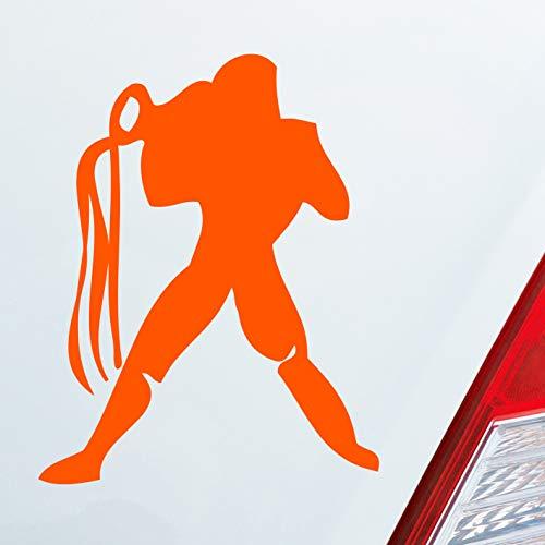 Auto Aufkleber in deiner Wunschfarbe Sternzeichen Wassermann PKW Car KFZ Roller 8x10 cm Autoaufkleber Sticker