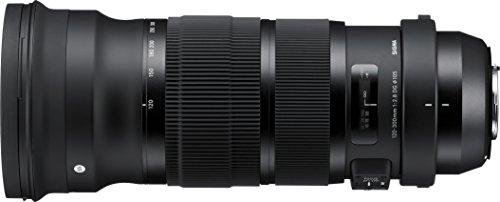 シグマ(Sports)『120-300mmF2.8DGOSHSM』