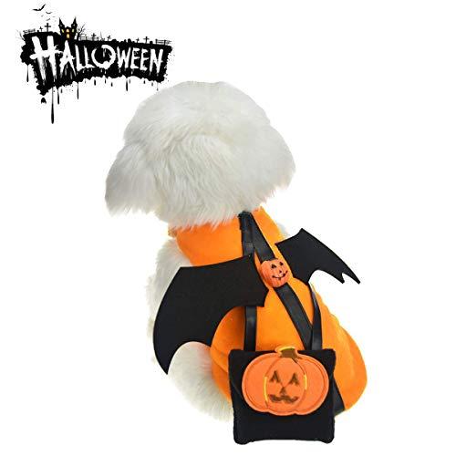 MMNM Haustier Kürbis Outfit, Halloween Lustige Hund Katze Fledermausflügel, Böse Kostüm Kleidung, Niedlichen Welpen Kostüm, Kleidung Für Hunde Katzen,XXXL