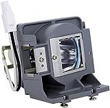 satukeji BL-FU190C para OPTOMA BR320 BR325 DS32 DS330 DX328 DX330 H100 S2010 S2015 S302 S303 W2015 Bombilla de lámpara de proyector con Carcasa