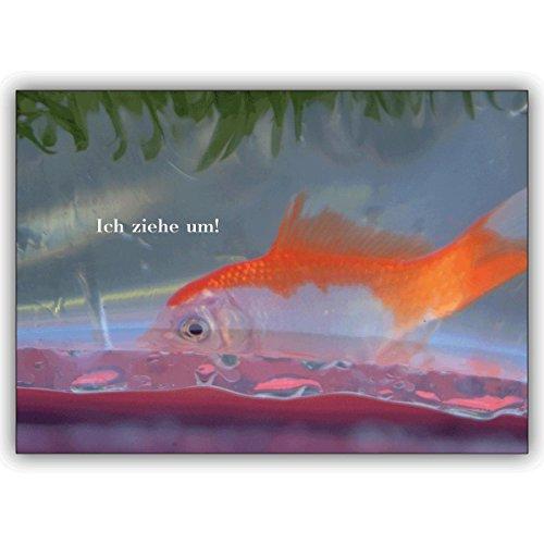 1 Weergavekaart: Grappige verhuiskaart met goudvis: Ik trek om! • Mooie wenskaart met envelop voor beste vrienden en lievelingsmensen.