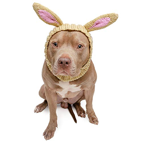 Zoo Snoods Jack Rabbit Dog Costume - Neck and Ear Warmer Hood for Pets (Large) - http://coolthings.us
