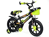 Norman Jr, DF Collection -Bike for Boys and Girls, Kids' Bicycle 14 Inch with Training Wheels for Ages 3-7 Years Old, Toddler Bike with 95% Assembled (Green Colour)