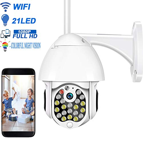 Wireless Outdoor Security Camera, HALUM 1080P WiFi PTZ Camera Surveillance Camera with 21 Super Bright LEDs Night Vision, Two Way Audio, Motion Detection, Waterproof - iOS, Android Cameras Dome