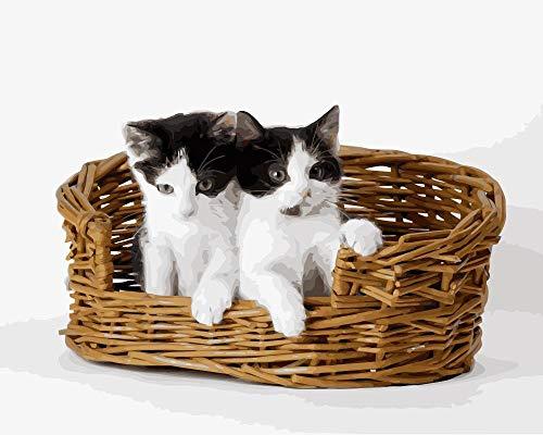 DIY Malen Nach Zahlen Kits Katze Klettert In Den Korb Für Erwachsene Acryl Ölgemälde Nach Zahlen Kits Kunsthandwerk Für Zuhause Wanddekoration 40 * 50Cm