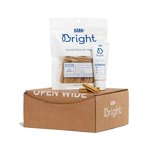 BarkBox Bright Dental Chews 1Month Supply | Vet Recommended Enzymatic Toothpaste amp Chew | Small Medium Large Dogs amp Cats of Any Size Enzymatic Gel  Extruded Chew Small 025lbs