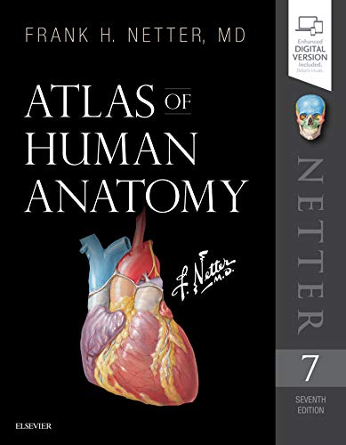 Compare Textbook Prices for Atlas of Human Anatomy Netter Basic Science 7 Edition ISBN 8600007152881 by Netter MD, Frank H.