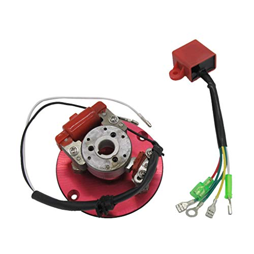 Tubayia Motorrad Magnetspulen Innenrotor Stator Kit Teil Zubehör für 50cc-125cc Motor