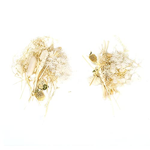 Zestaw Naturalnych Suszonych Kwiatów, Bukiet Suszonych Powietrzu Suszonych Ziół Wit na świecę Mydlaną Tworzenie Biżuterii z żywicy Kąpiel Paznokci Scrapbooking do Rękodzieła Artystycznego(beżowy)