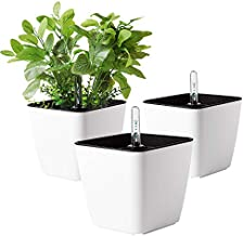 T4U 5.5 Inch Self Watering Plastic Planter with Water Level Indicator Pack of 3 - Matte White, Modern Decorative Planter Flower Pot for House Plants, Herbs, Aloe, African Violets, Succulents and More