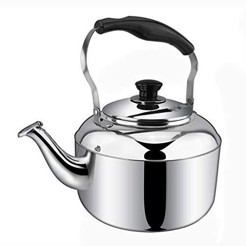 LCFF Bouilloire de santé de sifflet automatique de cuisinière à gaz 304 (Capacité : 4L)