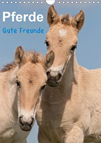 Pferde Gute Freunde (Wandkalender 2021 DIN A4 hoch)