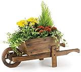 garden mile® Brouette en bois fantaisie pour jardin, plantes, herbes aromatiques, fleurs, 3 étagères, 2 étages, décoration extérieure naturelle (brouette en bois)