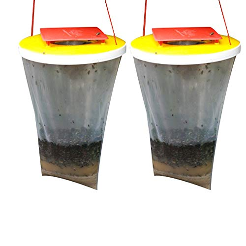 Miohy Fly Trap Standard Size  100% NonToxic Disposable Outdoor Fly Catcher  Designed to Attract EggLaying Females 1Pack 2pack