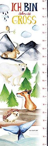 Close Up Messlatte Poster/Kinderzimmer Wandbild für Mädchen & Jungen/Kindermesslatte 30x 91,5cm