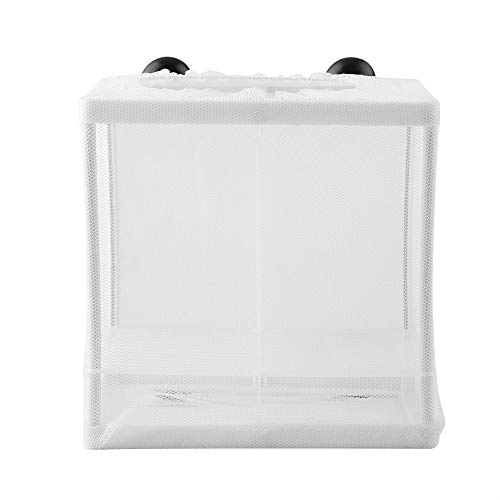 HEEPDD Boîte d'élevage de Poissons, diviseur d'isolement d'éleveur boîtes d'éclosion Accessoire Filet d'élevage de Poissons Aquarium réservoir d'incubateur éleveur