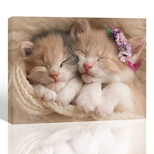 Purple Verbena Art HD Photos Sweet Animals Cute cat Photograph Print on Canvas Artwork Wall Decor for Home Bedroom Kid's Room Study Room Gift for Children 12x16 inches 1 pcs Framed Ready to Hang