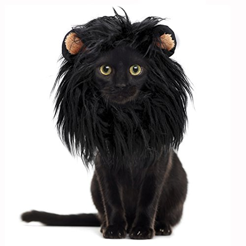 Onmygogo Lion Mane Wig for Cats, Funny Pet Cat Costumes for Halloween Christmas, Furry Pet Clothing Accessories (Size M, Black)