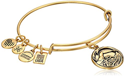 Alex and Ani Women's Team USA Swimming Bangle Gold One Size