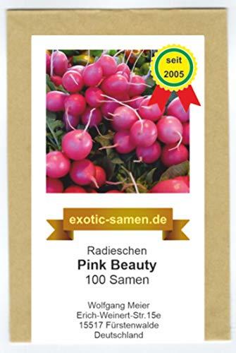 Radies, Radieschen - Pink Beauty - 100 Samen