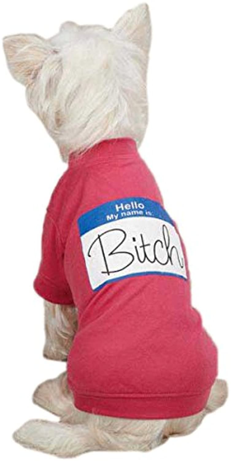 Casual Canine Hello My Name Is  Tee for Pets, XLarge Raspberry