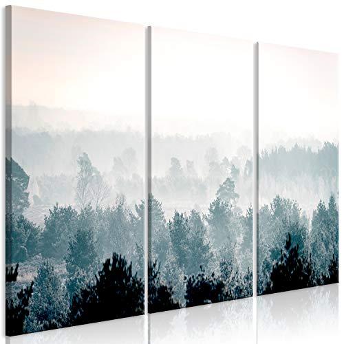 murando Cuadro Acústico Bosque Niebla 135x90 cm XXL Impresión...