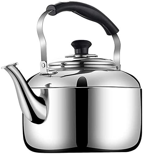 FENGNV Hervidor De Agua con Silbido Tetera de Agua, hervidor de Acero Inoxidable para Varias Estufas, Usado, café y Leche en casa, Cocina al Aire Libre(Color:Silver;Size:7L)