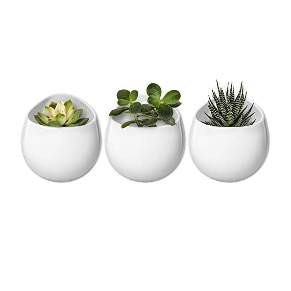 Mkono 4 Inch Wall Mounted Planter Round Ceramic Hanging Plant Holder Decorative Flower Display Vase Succulent Pots for Indoor Plants, Set of 3, White (Plants NOT Included) 1 Unique Design: Round shape plant vase finished with matte white, its glazed apperance looks in modern. Minimalist style and elegant design add decorative touch to any home and office decor, to brighten up your living space with indoor plants. Great gift idea for plant lover! Multipurpose Use: Improved opening is large enough for planting small succulents, ball cactus, herbs, air plants, water plants, or artificial plants. Functional for storage small items, such as placing makeup brush, pencils, mark pen, tableware, or toiletries in different scenes. Versatile Wall Decor: A hole in the back allows to hang on wall displaying your favourite plants. As a wonderful wall decor, prefect for using at home, office, shop. Additional ornament for hanging in bedroom, living room, kitchen, restroom, or entryway.