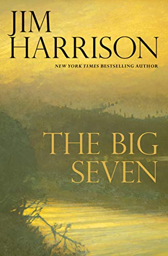 The Big Seven (The Detective Sunderson Series Book 2) (English Edition)