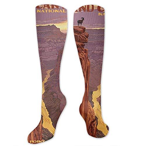 Grand Canyon National Park – Toroweap Point Kompressionsstrümpfe für Damen und Herren, beste Strümpfe für Krankenschwestern, Reisen, Laufen, Schwangerschaft