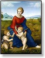 ラファエロ ベルヴェデーレの聖母(牧場の聖母) 【ポスター+フレーム】約 41 x 51 cm ブラック