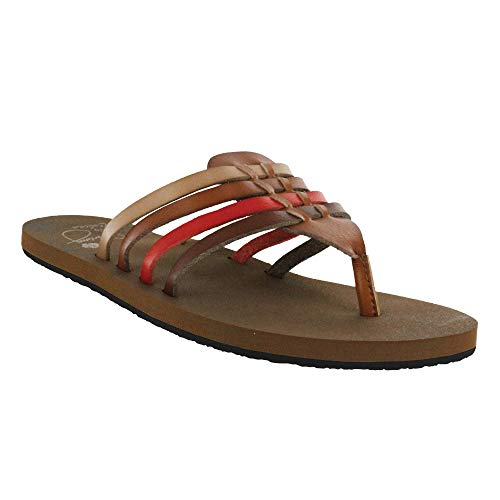 Cobian Women's Aloha Multi Sandals, 6