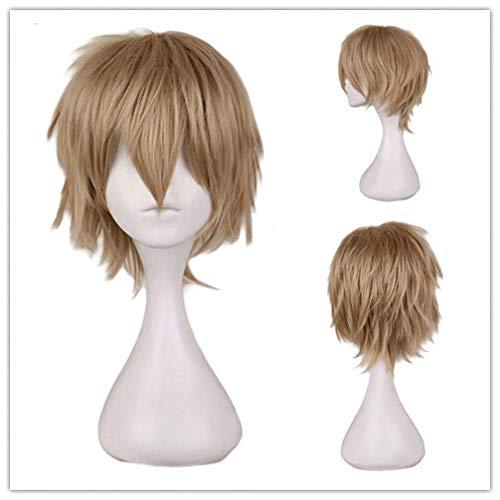 DGHJK Perruques Fantaisie Robe Cosplay Perruque Cheveux Court Synthétique Perruque de Cheveux Fibre Haute Température 30 CM Perruques pour Hommes Perruques de Cheveux Humains
