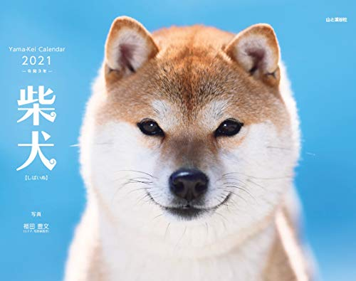 【Amazon.co.jp 限定】カレンダー2021 柴犬 (月めくり・壁掛け) (特典画像:柴犬 スマホ待ち受け画像) (ヤマ...